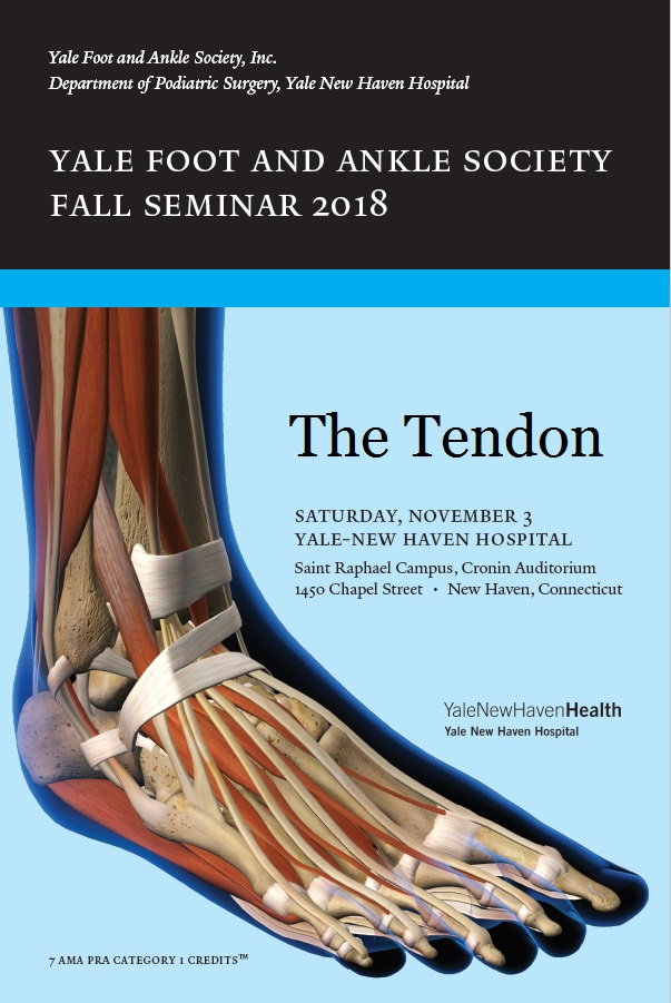 the tendon